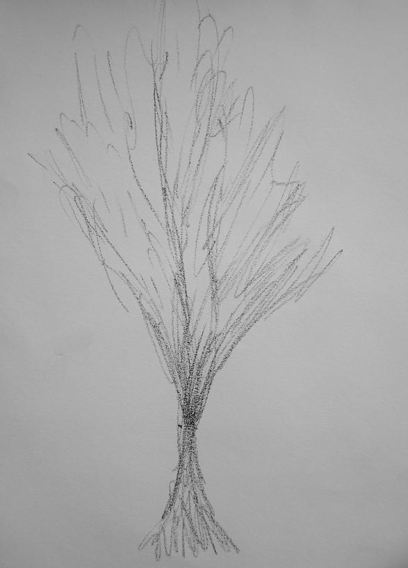 graphite on paper, a4, 2014