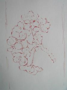 sanguine on paper, a5, 2015